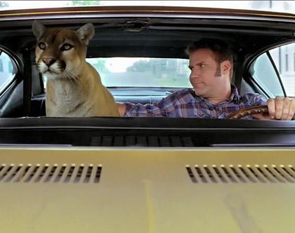ricky-bobby-cougar.jpg