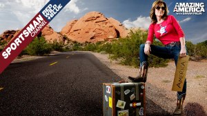 palin hitchhiking