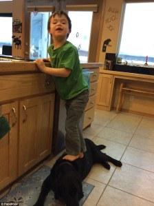 trig standing on dog