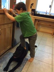 trig steppin on dog