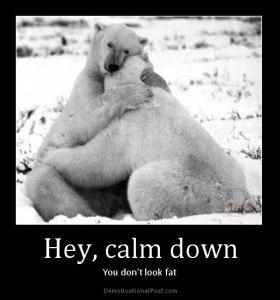 calm down nine polar bears