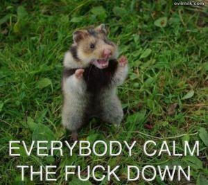calm down two