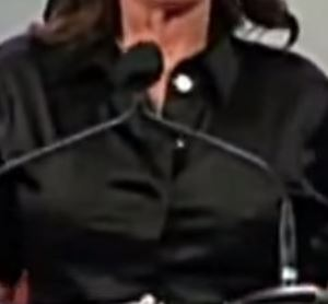 palin black shirt iowa nipples