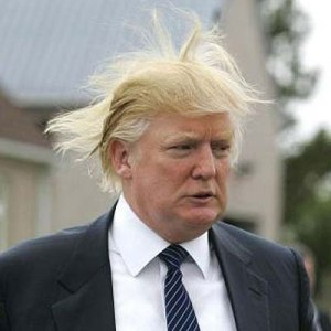 trump funny hair one