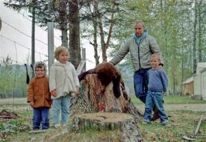 palin dead baby bear
