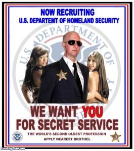 secret service we want you