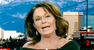 palin choose me for vp