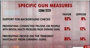 gun controls