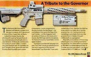 palin assault weapon