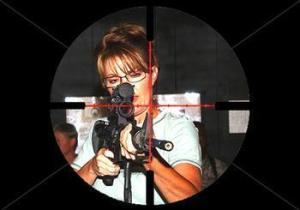 palin gun sight