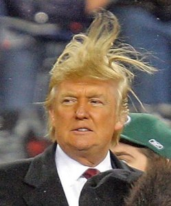 trump  funny hair two