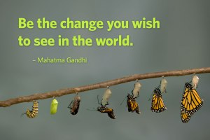 be the change monarch