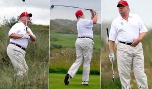 Donald Trump - Celebrity Style