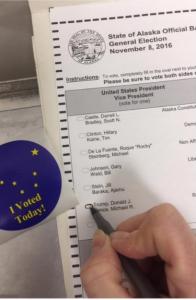 palin-ballot