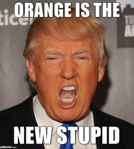 trump-orange-is-the-newstupid
