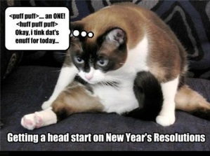 funny-new-year-resolution-one