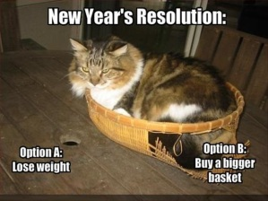 funny-new-year-resolution-three