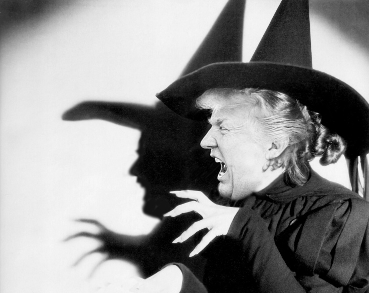 Image result for trump witch